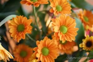 art happens autumn flowers