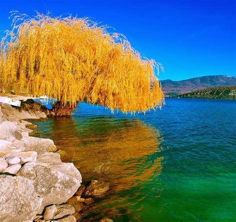 beautiful nature images beautiful images of love and nature www imgkid com the image kid has it