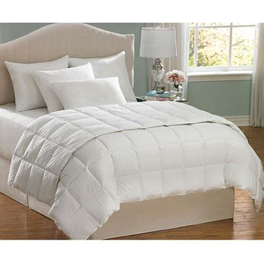 Penneys Comforters by Aller Ease Allergy Bedding Comforter Jcpenney