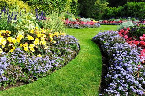 6 tips for water efficient landscaping better homes and