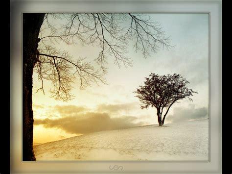 imagenes invierno wasap fondo de pantalla de invierno paisaje buscar pareja