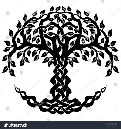 Vector Ornament Decorative Celtic Tree Life Stock Vector Celtic Tree Of Images