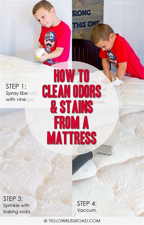How To Clean Urine Mattress by 17 Best Ideas About Urine Stains On Carpet Stain Remover Carpet Cleaner