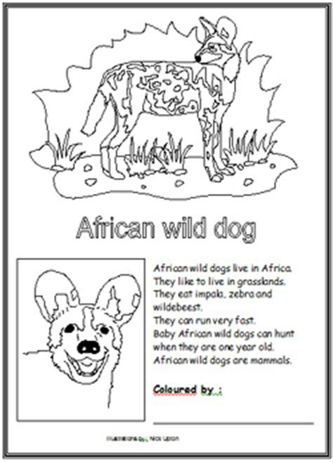 wild dog coloring pages freecoloring4u com