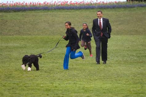 white house dogs obama free activities at presidential pets exhibit opening at clinton center little rock family