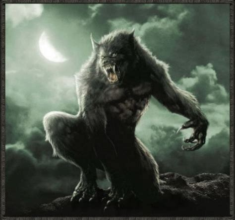 werewolf werewolves photo 12640998 fanpop