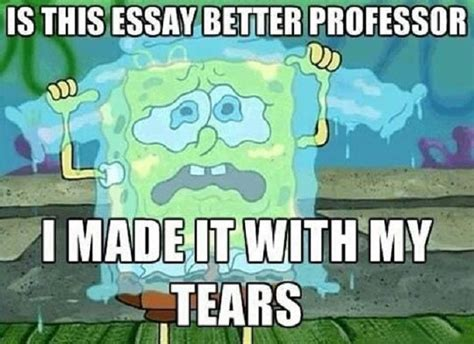 Essay Memes - 21 thoughts college students have with a new semester
