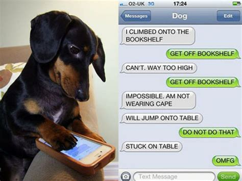 if dogs could text if dogs could text