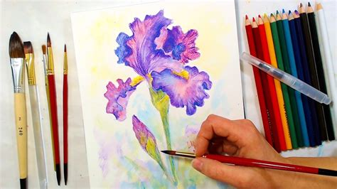 tutorial drawing watercolor iris watercolor pencil drawing and painting tutorial