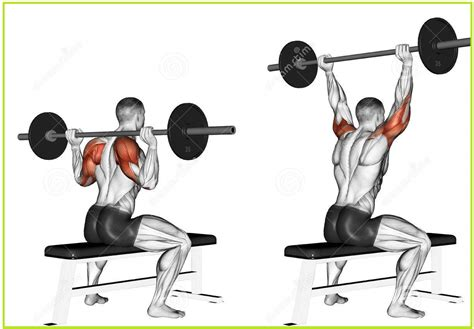 neck pain from bench press shoulder exercises for men basic exercises for broader