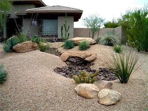 Desert Landscape Ideas For Backyards 596 Best Images About Desert Landscaping On San Diego Agaves And Succulents