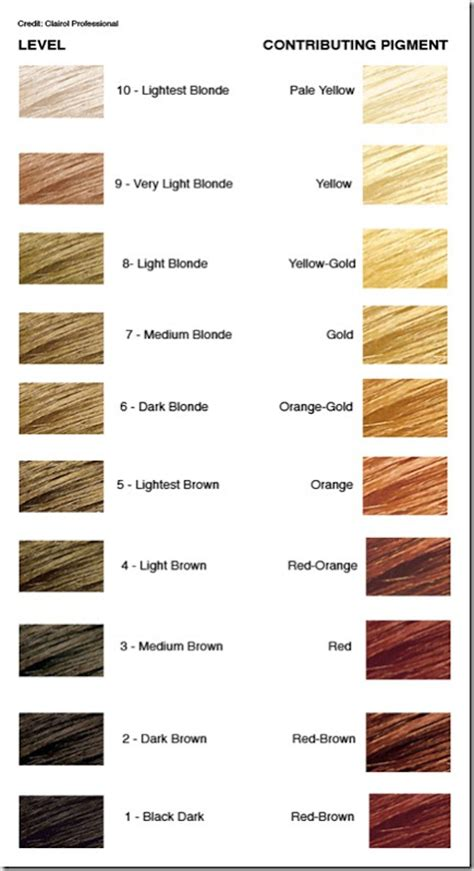 hair color levels the level system in hair color simple to understand