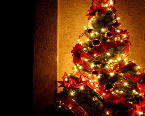 christmas tree with house wallpaper 50 beautiful tree wallpapers