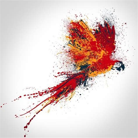 paint inspiration simple parrot paint craft digital art selected for the