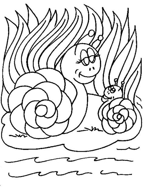 Snail Colouring Pages Snail Coloring Pages Coloringpages1001 Com by Snail Colouring Pages