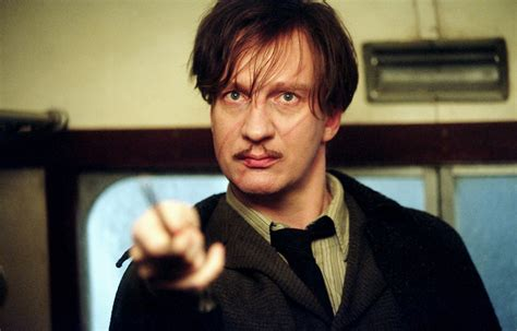 biography for professor sle why remus lupin is the best harry potter character