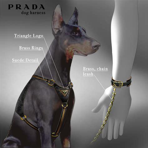 prada puppies prada harness by maisano at coroflot