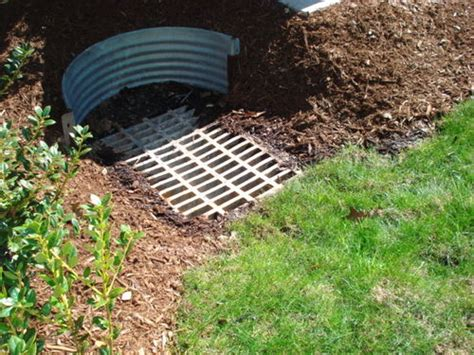 grass roots landscaping drainage