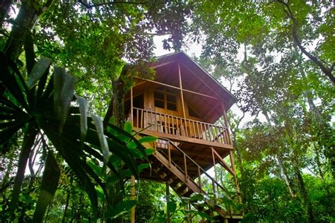treehouse hotel living abroad in costa rica 187 of treehouses sloths and