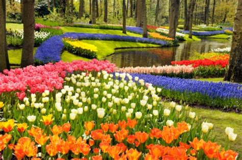 flower gardens pictures flower garden pictures pictures of beautiful flower gardens