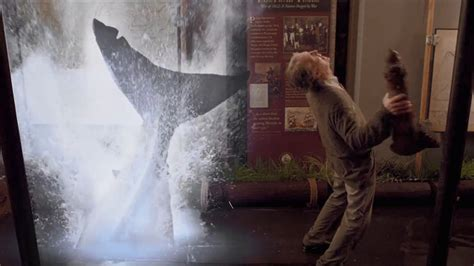 film ghost shark ghost shark shark week