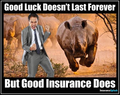 Insurance Meme - 167 best insurance agent love images on pinterest