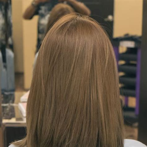 show a head of hair for light ash brown light beige brown 17 best ideas about ash brown hair dye on pinterest ash