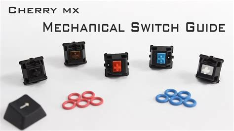 Switch Cherry Mx cherry mx mechanical switch guide