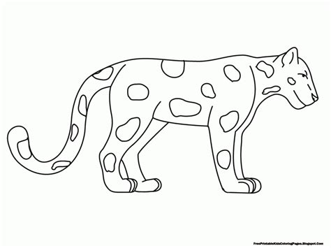 free printable animal drawings coloring pages animal classification rainforest animals