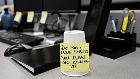 office desk pranks office pranks to pull on your co workers fool canada
