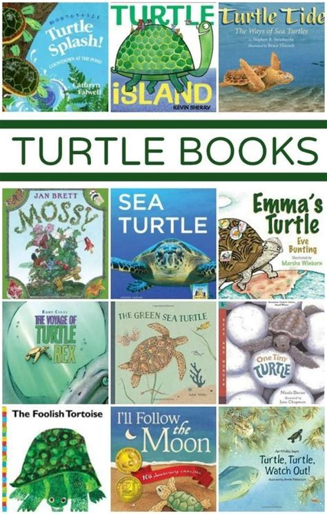the tuttle and the search for atlas books best 25 turtle classroom ideas on
