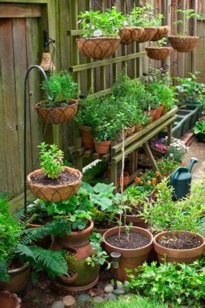 vegetable garden in pots clever ways to add space with creative vertical gardens