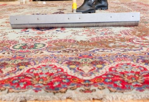 best rug websites five best guides to clean your rug articlecube