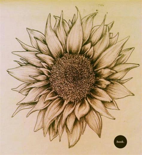 sunflower tattoo design say whatcha like bros but i honestly really my