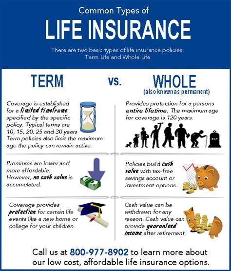 insurance 101 learn the basics of term