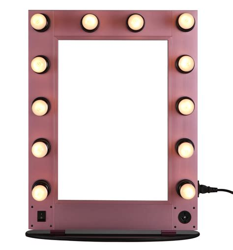 Makeup Mirror With Light by Professional Lighting Makeup Mirror Wall Mounted Lighted