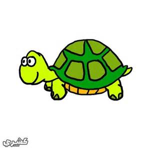 Texas Vase Tortoise Icon Related Keywords Amp Suggestions Tortoise