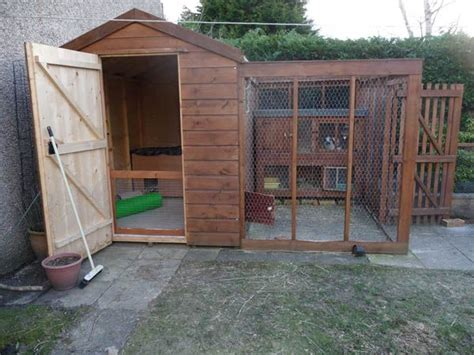 Rabbit Sheds by Pin By Best 4 Bunny On Great Rabbit Home Ideas