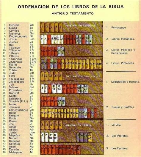 libro timeline 184 best images about homeschooling stuff on nelson mandela graphic organizers and