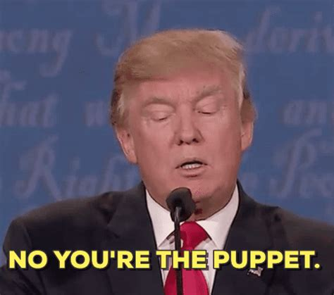 donald trump wrong gif election 2016 gif find share on giphy