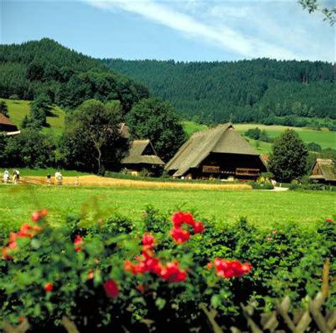 Häuser Kaufen Frankfurter Berg friburgo e la foresta nera