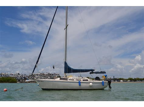catalina sailboats for sale florida 1981 catalina tall rig sailboat for sale in florida