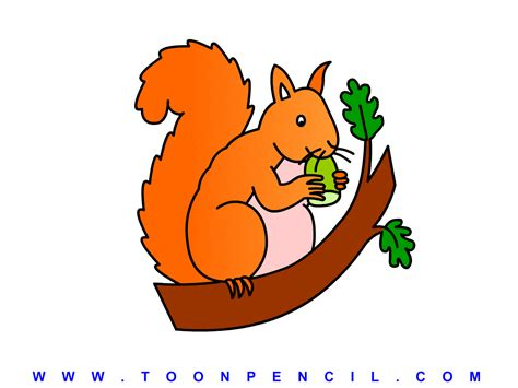 how to a for squirrel how to draw squirrel for clipart panda free clipart images