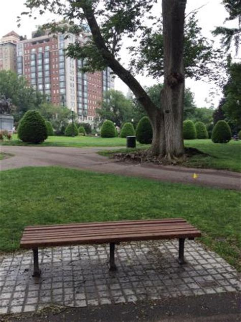 good will hunting bench bench from good will hunting now a tribute to robin williams picture of boston