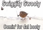 Swiggity Swag Meme - swiggity swag know your meme