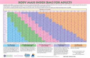 Laminated bmi chart for adults this full color bmi chart is a great