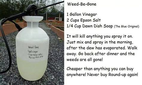 How To Make DIY Weed Killer   How To Instructions