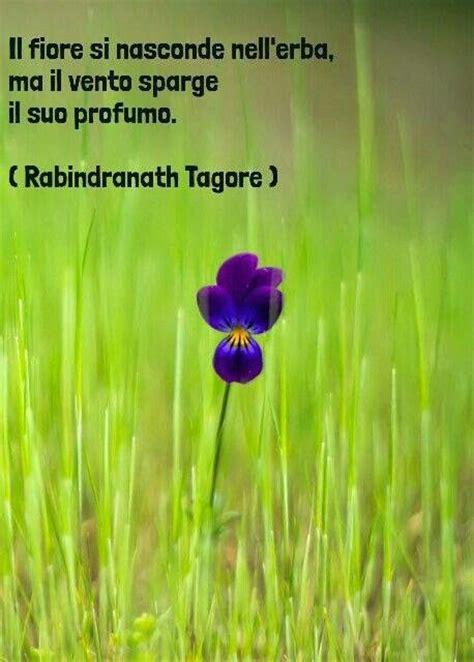 i fiori frasi il fiore poesie filastrocche frasi