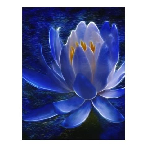 meaning of blue lotus flower lotus flower and its meaning