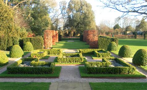 instant box hedge with specimen topiary classic